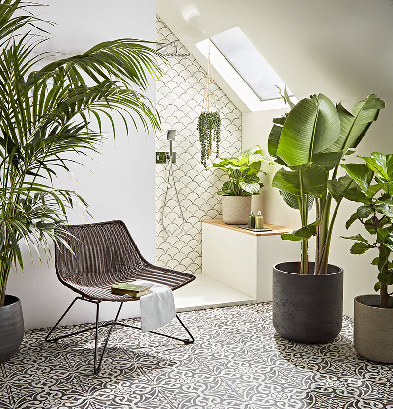 Our Guide to Choosing & Styling Bathroom Plants Image 3